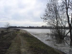 árvíz II.2006 013