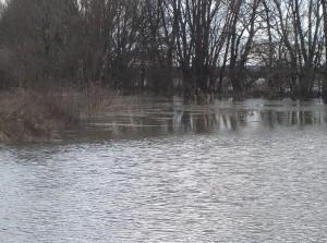 árvíz II.2006 014