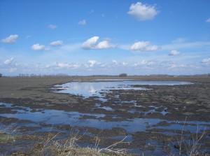 árvíz II.2006 029