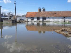árvíz II.2006 049
