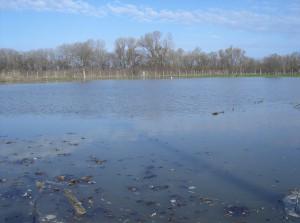 árvíz II.2006 102