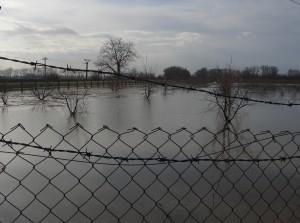 árvíz II.2006 109