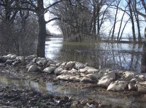 árvíz II.2006 119