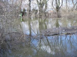 árvíz II.2006 177