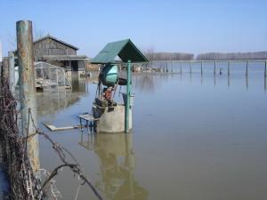 árvíz II.2006 210