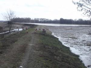 árvíz II.2006 251