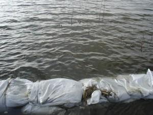 árvíz II.2006 300