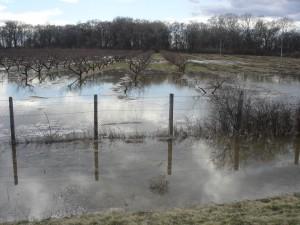 árvíz II.2006 306