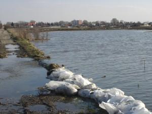 árvíz II.2006 315