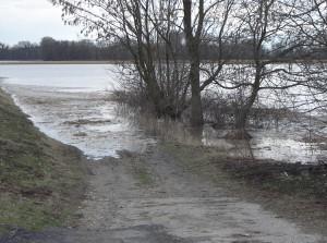 árvíz II.2006 012