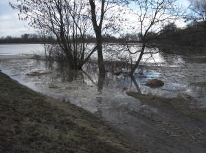 árvíz II.2006 022