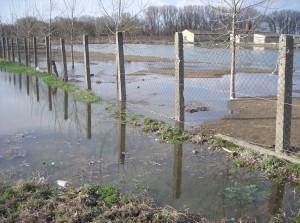 árvíz II.2006 086