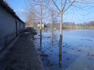 árvíz II.2006 103