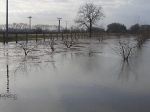 árvíz II.2006 121