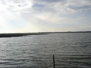 árvíz II.2006 297