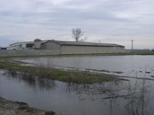 árvíz II.2006 349
